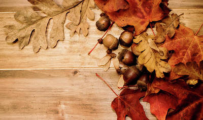 Photograph - Leaves And Nuts 1 by Rebecca Cozart