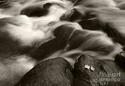 White And Black Waterfalls Photograph - Leaves And Waterfall by Timothy Johnson