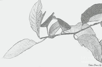 Digital Art - Leaves Black And White Sketch Effect by Debbie Portwood