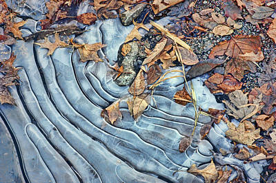 Photograph - Leaves - Ice Patterns by Nikolyn McDonald