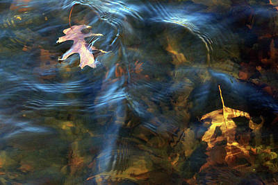 Photograph - Autumn Leaves In Shallow Water With Ripples by Cora Wandel