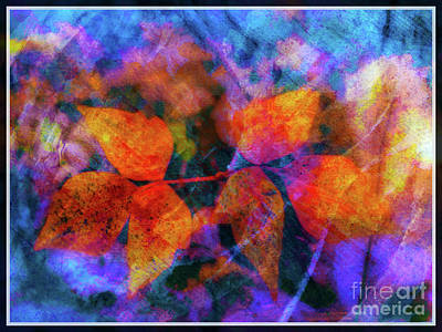 Photograph - Leaves In The Storm by Judi Bagwell