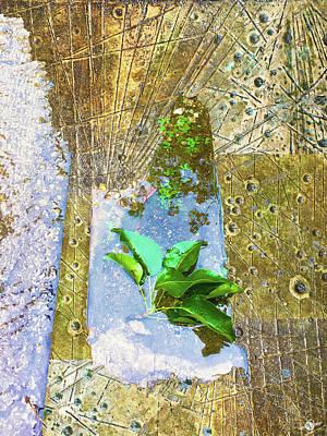 Mixed Media - Leaves In Water by Tony Rubino