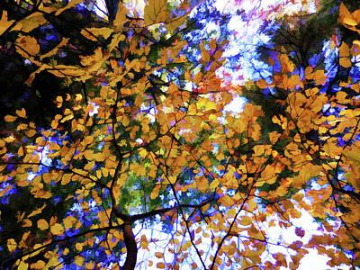 Leaves Of Autumn Art Print