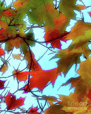 Photograph - Leaves Of Fall by Scott Cameron