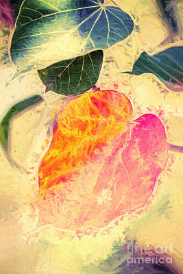 Psychedelic Photograph - Leaves Of Impressionism by Jorgo Photography - Wall Art Gallery