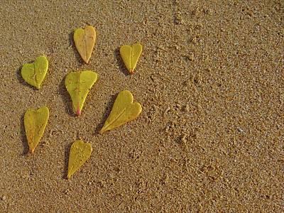 Exploramum Wall Art - Photograph - Leaves Of Love - Close Up by Exploramum Exploramum