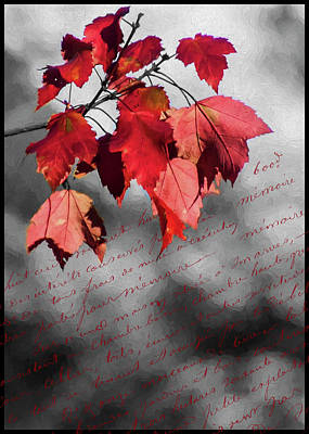 Photograph - Leaves Of Red by Cathy Kovarik