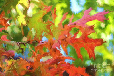 Photograph - Leaves Of Red by Robert ONeil