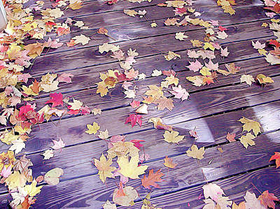 Photograph - Leaves On Deck by Linda Carruth