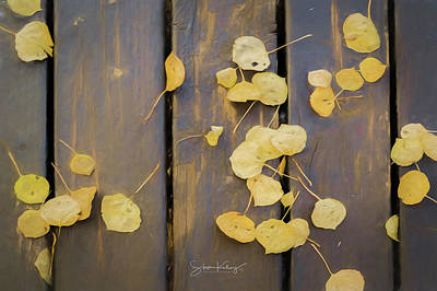 Leaves On Planks Art Print