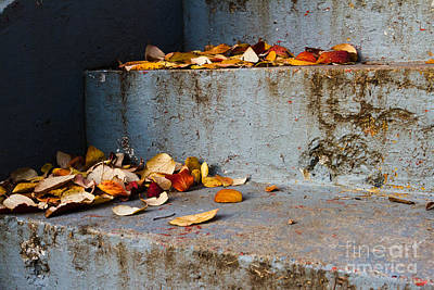 Leaves On The Stairs Art Print