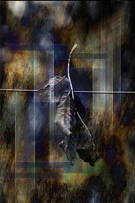 Photograph - Leaves On Wire by Randi Grace Nilsberg