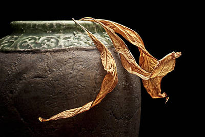 Pot Photograph - Leaves by Tom Mc Nemar