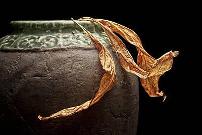Flowerpot Photograph - Leaves by Tom Mc Nemar