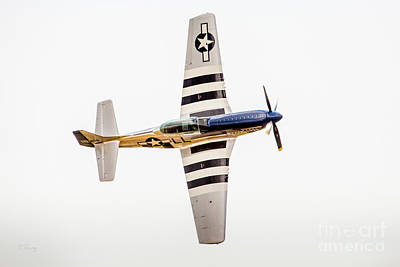 Photograph - Lee Lauderback P-51 by Rene Triay Photography