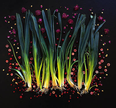 Photograph - Leeks by Sarah Phillips