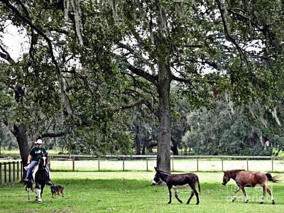 Photograph - Lee's Ranch 2 by Sarah Loft