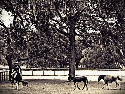 Photograph - Lee's Ranch 2 Sepia by Sarah Loft
