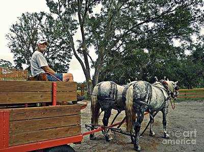 Photograph - Lee's Ranch 8 by Sarah Loft