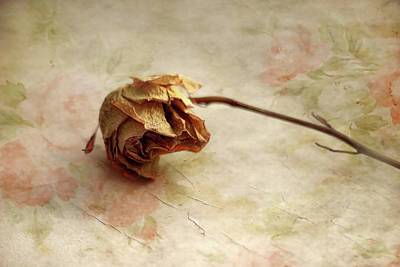Dried Photograph - Left Alone by Jessica Jenney