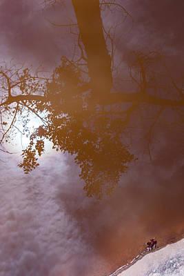 Photograph - Left by Deborah Hughes