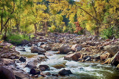Scenics Photograph - Left Hand Creek by James BO  Insogna
