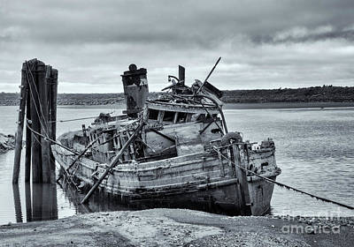 Photograph - Left To Rot by Mike Dawson
