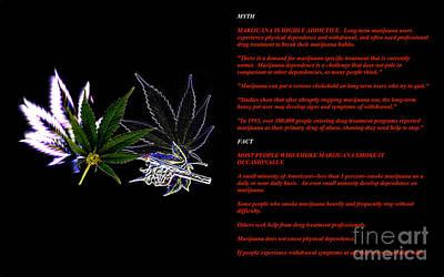 Digital Art - Legalize It by Jacqueline Lloyd