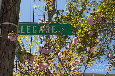Photograph - Legare St by Dale Powell