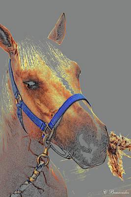 Legend Of A Horse Art Print