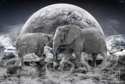 Elephant Photograph - Legends Live On by Nichola Denny