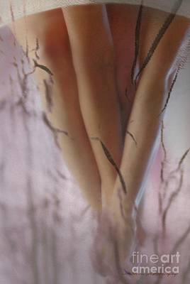 Photograph - Legs by Vicki Ferrari