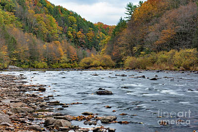 Photograph - Lehigh Valley Gorge by Nicki McManus