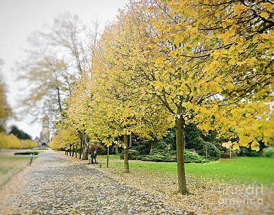 Photograph - Leipzig Memorial Park In Autumn by Ivy Ho