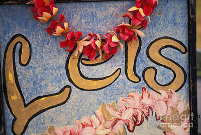 Photograph - Leis For Sale by Dana Edmunds - Printscapes