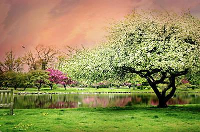 Photograph - L'eleganza Della Primavera by Diana Angstadt