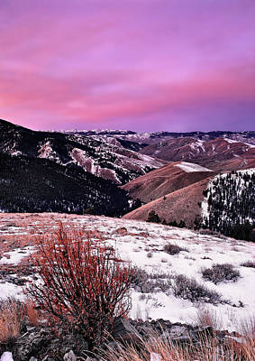 Lemhi Pass Art Print by Leland D Howard