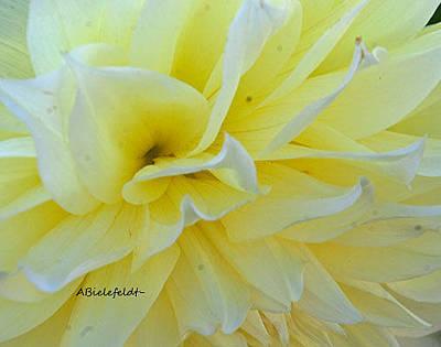 Floral Photograph - Lemon by April Bielefeldt