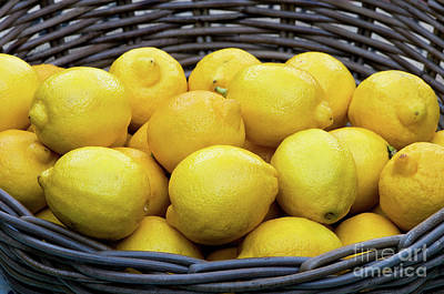 Photograph - Lemons 04 by Rick Piper Photography