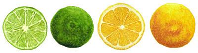 Lemons And Limes Art Print by Kathleen Skinner