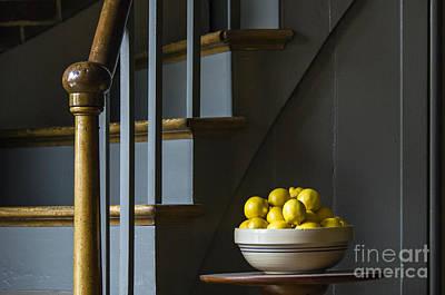 Photograph - Lemons - D009753 by Daniel Dempster