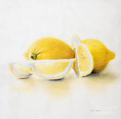 Drawing - Lemons by John Small