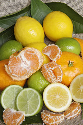 Lemons Limes And Mandarins Original by Geoff Bryant