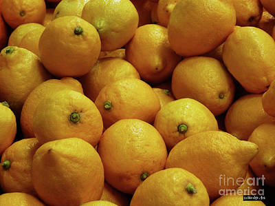 Photograph - Lemons by Methune Hively