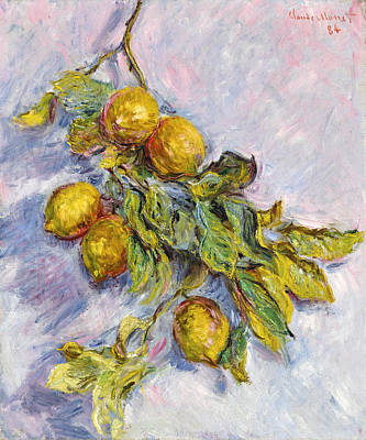 Painting - Lemons On A Branch by Claude Monet