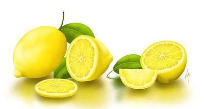 Lemon Painting - Lemons-white by Veronica Minozzi