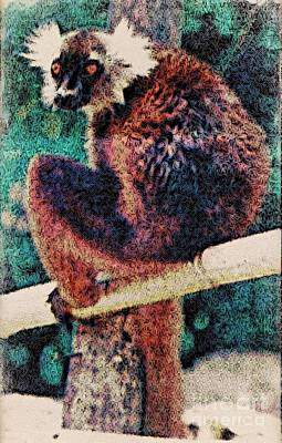 Photograph - Lemur March 30 1997 News Paper Article by Phyllis Kaltenbach