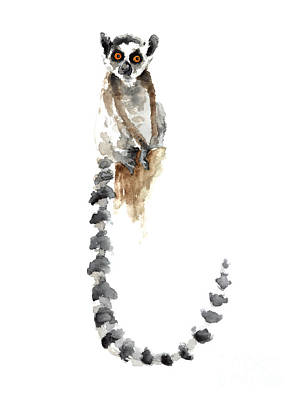 Lemur Painting - Lemur Watercolor Art Print Poster by Joanna Szmerdt