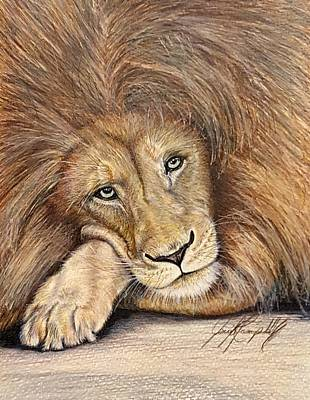 African Big Cats Drawing - Leo The Lazy Lion by Jennifer Campbell Brewer